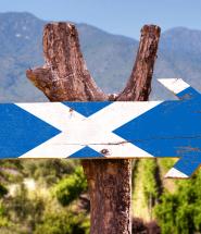 Vlajka Škótska