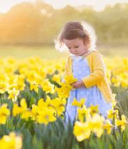 Malé dievčatko medzi kvetmi na lúke
